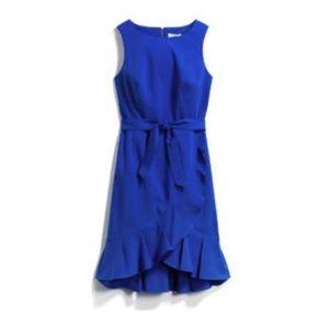 Calvin Klein Stitch Fix Flore Cotton Cobalt Dress